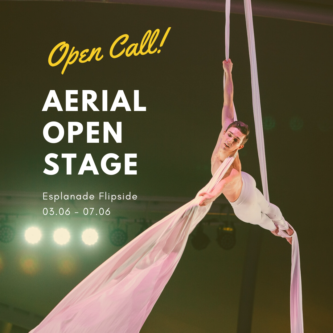 Open Call flipside aerial open stage
